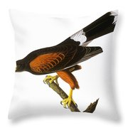 Audubon: Hawk, 1827 Throw Pillow