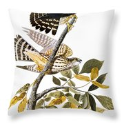 Audubon: Hawk Throw Pillow