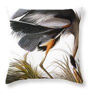 Audubon Heron Throw Pillow