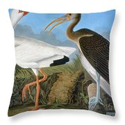Audubon: Ibis Throw Pillow