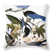 Audubon: Jay And Magpie Throw Pillow