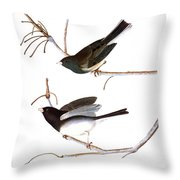 Audubon: Junco, (1827) Throw Pillow