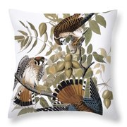 Audubon: Kestrel, 1827 Throw Pillow