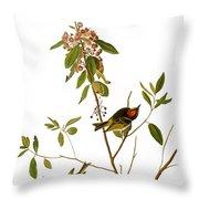 Audubon: Kinglet, 1827 Throw Pillow