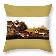 Audubon Lark Throw Pillow