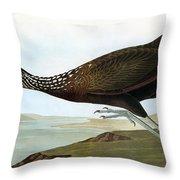 Audubon: Limpkin Throw Pillow