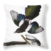 Audubon: Magpie Throw Pillow