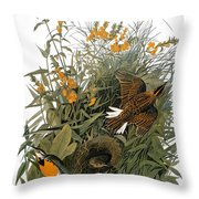 Audubon: Meadowlark Throw Pillow