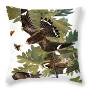 Audubon: Nighthawk Throw Pillow
