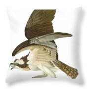 Audubon: Osprey Throw Pillow