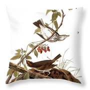 Audubon: Ovenbird Throw Pillow