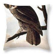 Audubon Owl Throw Pillow