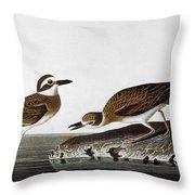 Audubon: Plover, 1827-38 Throw Pillow