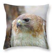 Audubon Quality Throw Pillow