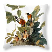 Audubon: Robin Throw Pillow