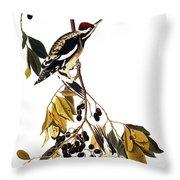 Audubon Sapsucker, 1827-38 Throw Pillow