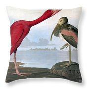 Audubon: Scarlet Ibis Throw Pillow