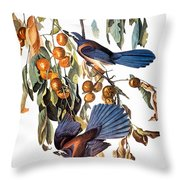 Audubon: Scrub Jay, 1827-38 Throw Pillow