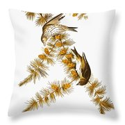 Audubon: Siskin Throw Pillow