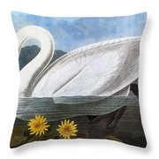 Audubon: Swan, 1827 Throw Pillow
