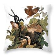 Audubon: Thrasher Throw Pillow