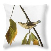 Audubon: Thrush, 1827 Throw Pillow