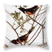 Audubon: Towhee Throw Pillow