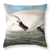 Audubon: Trumpeter Swan Throw Pillow