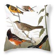 Audubon: Various Birds Throw Pillow