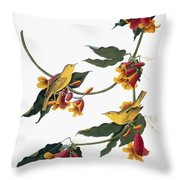 Audubon: Vireo, 1827-38 Throw Pillow