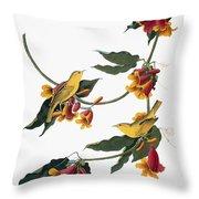 Audubon: Vireo, 1827-38 Throw Pillow