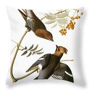 Audubon: Waxwing Throw Pillow