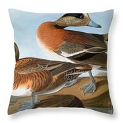 Audubon: Wigeon, 1827-38 Throw Pillow
