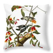 Audubon: Woodpecker, 1827 Throw Pillow
