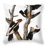 Audubon: Woodpecker Throw Pillow