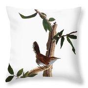 Audubon: Wren, (1827-38) Throw Pillow by Granger