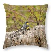 Audubon's Yellow Rumped Warbler Throw Pillow