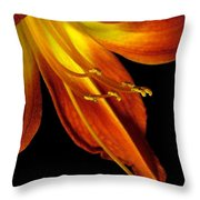 August Flame Glory Watercolor Throw Pillow