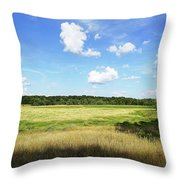August Noon Throw Pillow