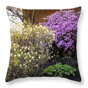 Augusta Hotel Landscaping Throw Pillow