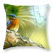 Augusta Masters 2010 05 Throw Pillow