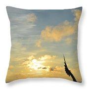 Aun Puedo Volar Throw Pillow