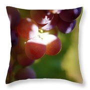 Auntie Thelma's Grapes - Ripening Throw Pillow