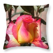 Aurora Color Rose Bud. Wow Throw Pillow