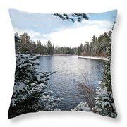 Ausable River 4820 Throw Pillow