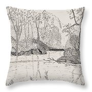 Ausable River At Rock Glen Throw Pillow
