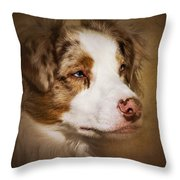 Aussie Alert Throw Pillow
