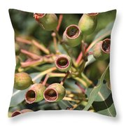 Australia Ingumnuts Throw Pillow