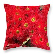 Australian Native Eucalyptus Flowers Throw Pillow