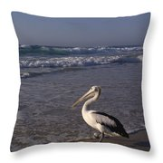 Australian Pelican And Surf Throw Pillow